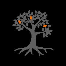 noun_Tree_2584131og
